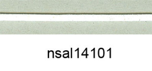 nsal14101